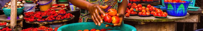 woman-holding-tomatoes-3213283